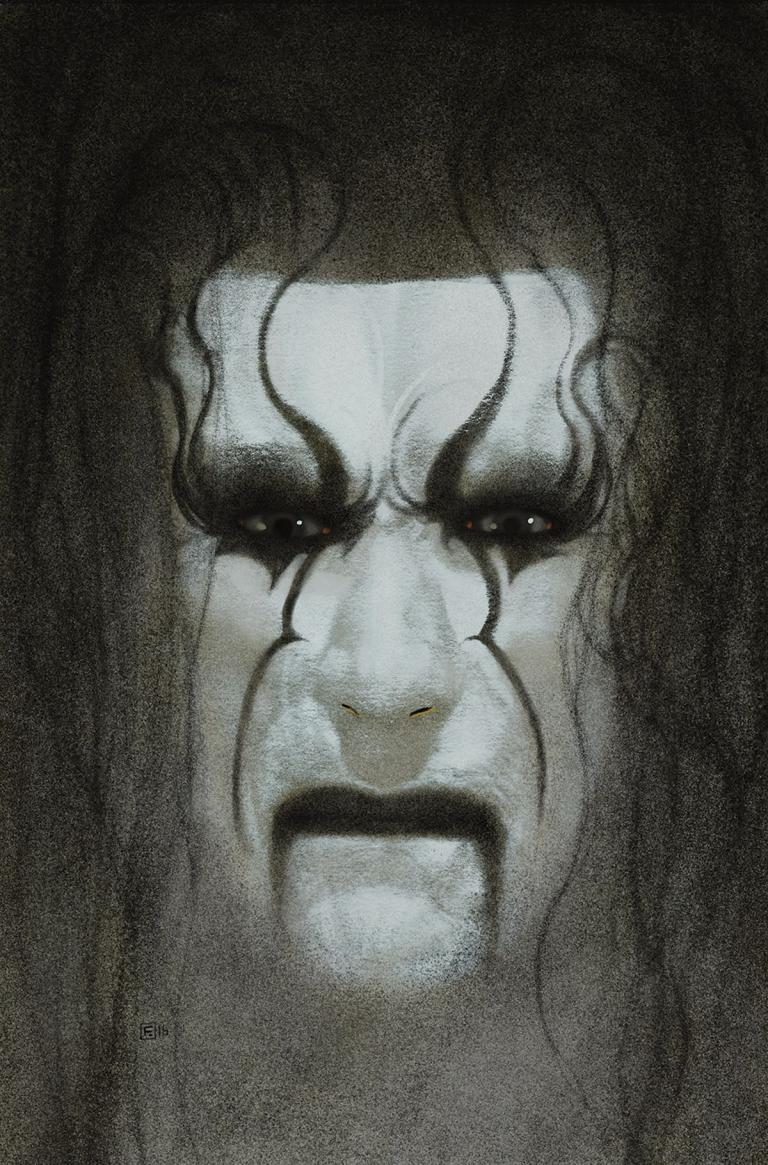 WWE #4 (Cover D Frazer Irving Sting Variant)