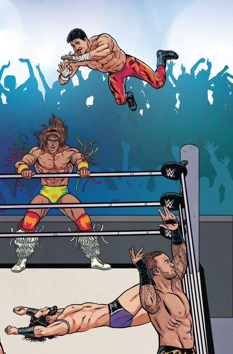 WWE #6 (Cover E Brent Schoonover Royal Rumble Connecting Variant)