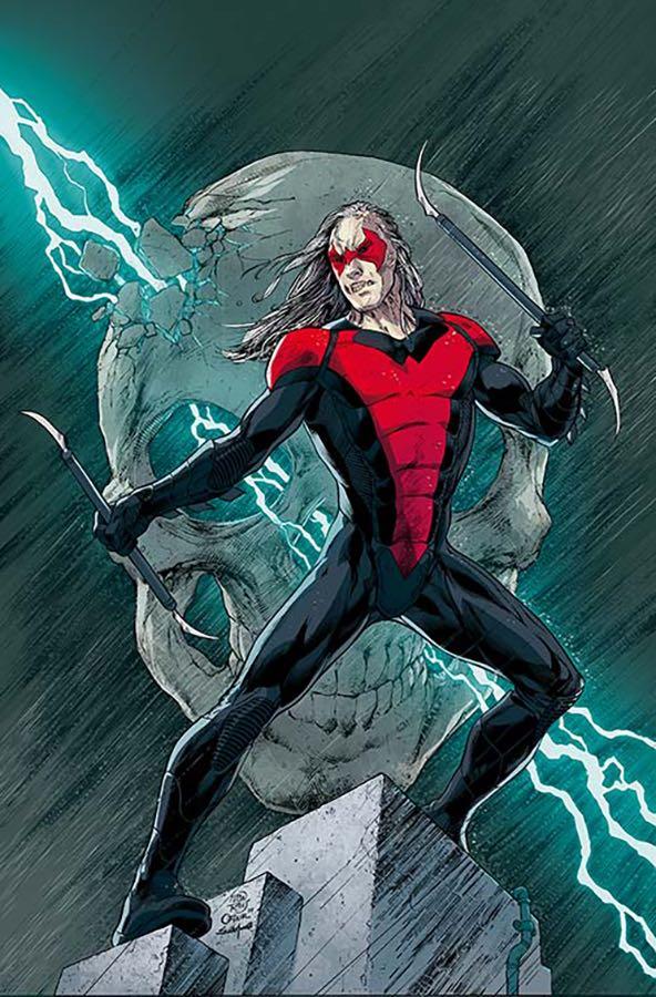 Nightwing #17 (Cover B Ivan Reis & Oclair Albert)