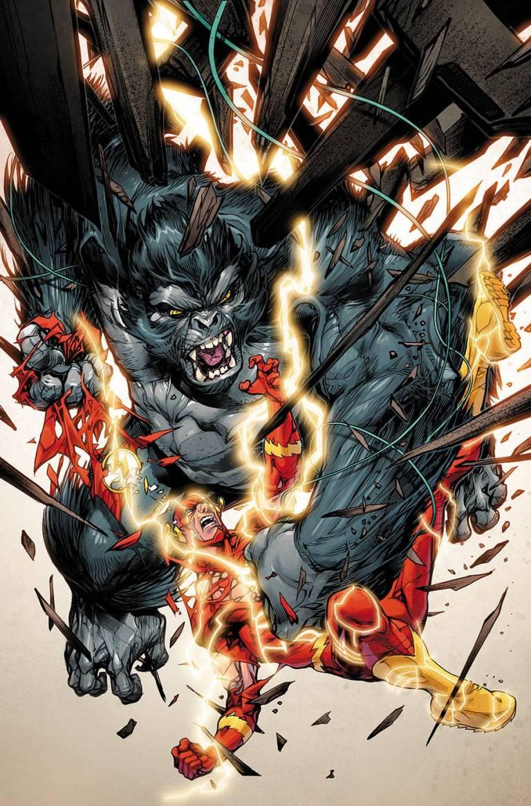 flash #40 (cover b howard porter)